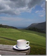 Tea Cup in Ireland