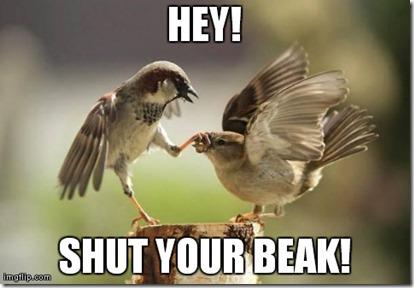 Shut Your Beak